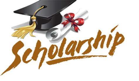 How to write a Scholarship Essay - Examples